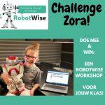challenges voor thuis van RobotWise Zora robot